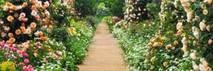 Den Garten richtig planen