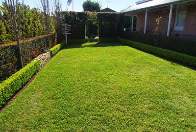 Geliebte In 6 Phasen den perfekten Rasen anlegen - Gartenfräse Experte @PA_31
