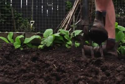 Beete Umgraben So Geht Es Richtig Gartenfrase Experte